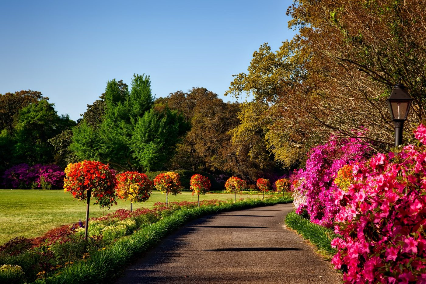 Tips for starting a large garden from scratch – Countrified